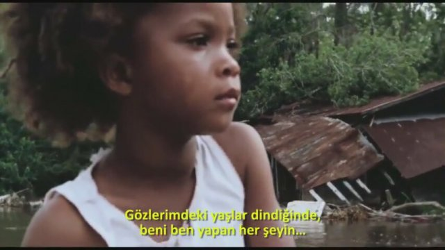 Düşler Diyarı (Beasts of the Southern Wild)